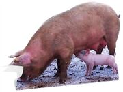 Pig And Piglet Lifesize Cardboard Cutout Fun Figure 92cm Tall - For Your Party