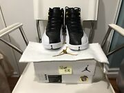 Ds New Nike Air Jordan 12 Xii Wing Sz 10 Rare Limited 100 Authentic Aj12