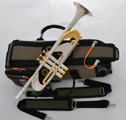 Professional Heavy Bb Trumpet Horn Brushed Silver Germany Brass With Case