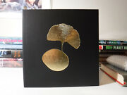 Signed And Lettered Edition Weight Of Words Dave Mckean And William Schafer