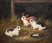Rabbits In The Farm No.- 7 20x24 100 Hand Painted Oil Painting On Canvas