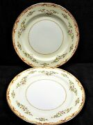Vintage Gold China Made In Occupied Japan Dinner Plates X2 Cream Rust Gold Trim