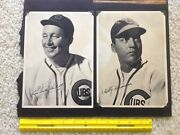 Complete Set Of 25 1935 Photos Of Chicago Cubs