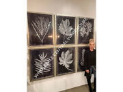 Six Urban Country Modern Leaf Foliage Prints Wall Art Pictures Home Garden Decor