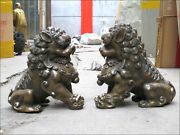 Chinese Bronze Copper Palace Evil Guardian Feng Shui Foo Dog Lion Beast Pair
