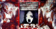144 Wholesale Lot Unit Books Lost Pages From The Twisted Mask Makers Diary New