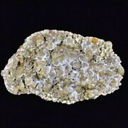9650g Museum Quality-natural Sheet Pyrite Of Calcite Based On Dog Tooth Calcite