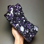 3200gnew Find Natural Cube Deep Purple Fluorite Cluster And Pyritemineral Specimen