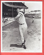1949 Red Sox Team Issue Glossy 8 X 10 Ted Williams