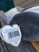 Ty Beanie Baby Drake The Duck Retired With Mis Printed Tags And Red Stamp.andnbsp