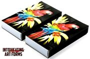 Macaw Parrot Tiki Design Cigar Large Pack Box Wooden Matches - New In Box