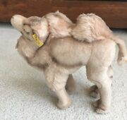 Vtg 68-76 Steiff Cosy Camel Plush 11 Two Humps Germany Ear Button 4890/28