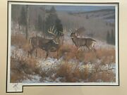 Rare Hayden Lambson Signed A/p Remarque Edition White Tail Bucks Print 150/150