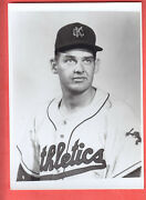 1961 Kansas City A's  Glossy Team Issued Photo Set Of 36 Nm/mt