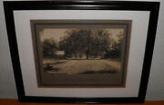 Antique Photo Florida 11x14 Silver Gel Late 1800s Early 1900s Orange Springs