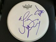 Hollywood Vampires Signed Autographed 10' Drumhead Johnny Depp Joe Perry Cooper