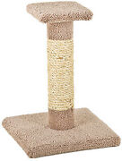 Kitty Cactus With Natural Rope And Top, 18-in.
