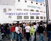 Last Game Old Comiskey Park 9/30/1990 White Sox Fans Leaving Color 8x10 Ddd