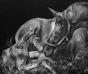 And039eternally Blessedand039 Professional Mare And Foal Horse Print By Jessica Hill