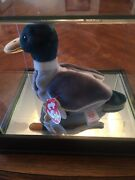 Super Rare Jake The Drake Duck 1997 Beanie Baby With All 9 Errors Mint Condition
