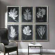 Six Huge 34 Foliage Leaf Prints Under Glass Wall Art Pictures Uttermost 33671