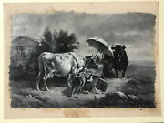 Vintage 1885 Oil Painting On Paper Illustration E. Burril Cows Painting