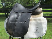16 County Connection Xtr Child/ Petite Adult Dressage Saddle-rare Small Size