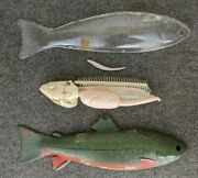 Vintage Anatomical Fish Model Veterinary Science Teaching 16 3/8 L 5 3/8w