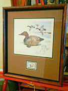 Duck Stamp Print Canvasback Decoyjames P. Fisher/ Hunting And Conservation Stamp