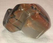 Polished Petrified Wood. Beautiful Colors. Very Lucky Poker Card Protector