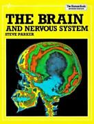 The Brain And Nervous System Human Body, Parker, Steve, Good Book