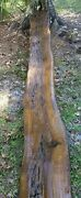 Real Old Growth 2320 Year Old Carbon Dated Pecky Sinker Cypress Wood Bartop Slab