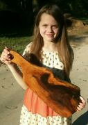 Old Growth Burl Southern Magnolia Cheese Charcuterie Board Wall Art Made In Usa