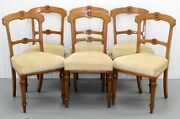 Set Of Six Victorian Oak Gothic Dining Chairs Horse Hair Seat And Tapered Legs