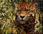 Original Oil Painting By Renowned Artist Wildlife Andlsquotony Forestandrsquo Of A Jaguar