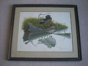 Original Wood Duck Hunting Print Lithograph Picture Sloan Wade Collection