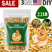 22 Lbs Bulk Dried Mealworms For Wild Birds Food Blue Bird Chickens Hen Treats