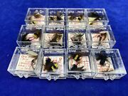 Lot Of 24 Vintage Fly In Boxes / Flies / Lures Fly Fishing