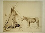 Blackfoot Brave And Pony By Notman And Sonand039s. Canadian Native Indian 1889 Photo.