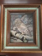 Vintage Basil Ede Owl In Shadow Box Real Feathers 3d 12.5x14.5x3.5 Wall Decor