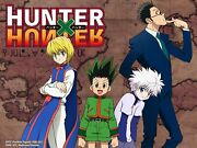 Hunter X Hunter Complete Anime Series Episodes 1-148 + Movies