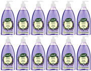Dalan Therapy French Lavender Hand Wash, 13.5 Oz Pack Of 12