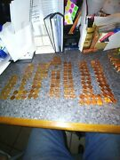 U.s.a. Penny Collection Great Started Set 149 Pennies 1954 To 2020pandd