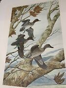 Green-winged Teal Signed John Ruthven Lithograph Mint Condition Ducks Unlimited