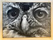 Antique Owl Photograph, Black Andwhite Artistic With Exhibition Tags Andaward 1939