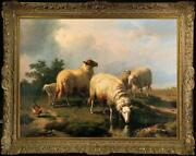 Hand Painted Old Master-art Antique Oil Painting Animal Sheep On Canvas 30x40
