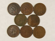 8 Xf Indian Cents 00 01 02 03 05 06 07 08