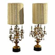 Pair Of Tall French Provincial Gold Crystal Table Lamps W Shaggy Lampshade