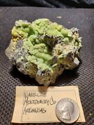 Exceptional Wavellite Montgomery County Arkansas 301 Grams Sparkling Crystals