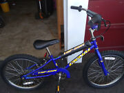 Top Gun 20 In Blue Bike Which Is Used But Great Shape.